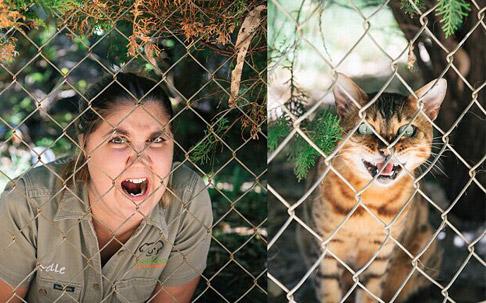澳动物园管理员模仿动物搞笑照片蹿红网络