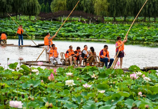 固城湖水慢城荷花旅游节开幕