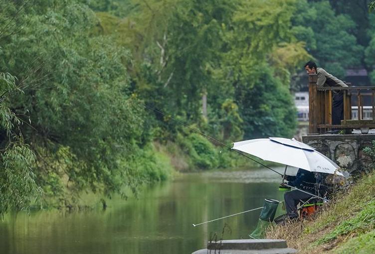 河长治水成就生态之美