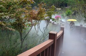 霧境(徐澎 攝)