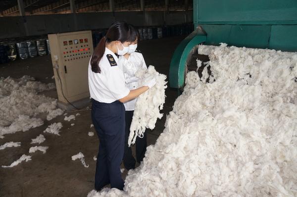 江苏1至11月检出有害生物10817种次