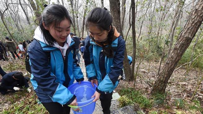 南京开展紫金山登山道沿线生态复绿活动