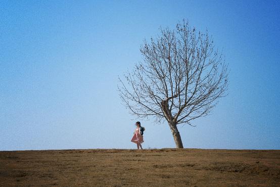 和大树亲密约会 教你拍出文艺范