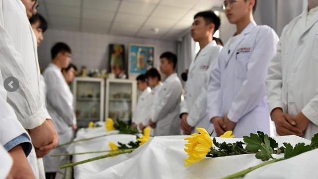 器官捐献与移植事业的中国华章