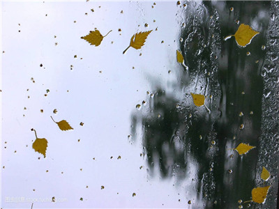 江蘇明夜起陰雨綿綿 周末冷空氣來襲 24小時氣溫降幅8℃左右