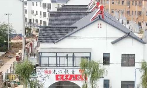 【視頻】江蘇盱眙:蝦舞稻田間 唱響革命老區的致富歌