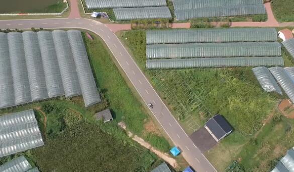 【圖文】為有源頭活水來——生態農業激活句容鄉村之美