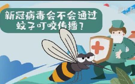 新冠病毒會不會通過蚊子叮咬傳播?