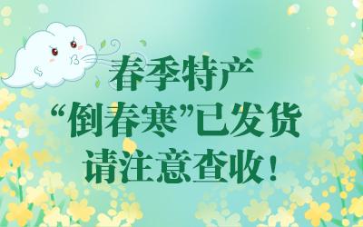 """春季特産""""倒春寒""""已發貨 請注意查收!"""