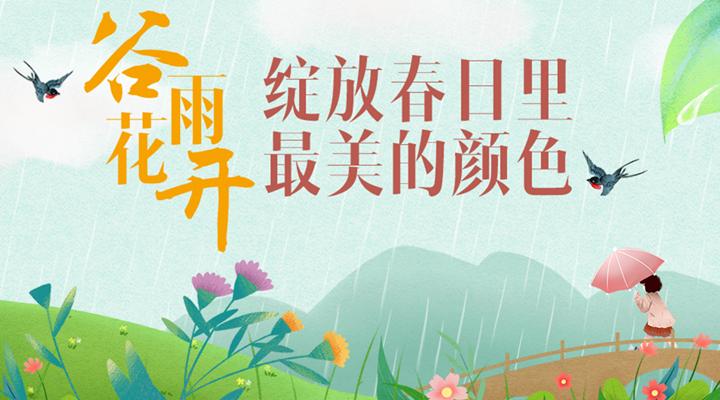 谷雨花開,綻放春日裏最美的顏色