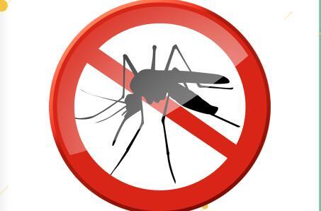 前方蚊蟲出沒,請當心!