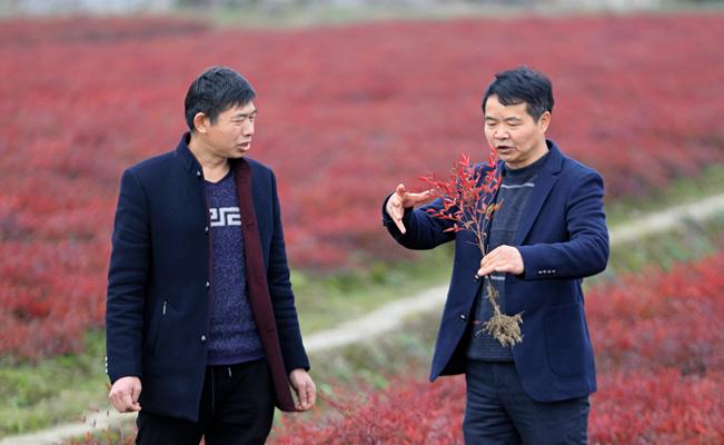 歐陽華:生態立村、文化強村、旅遊富民