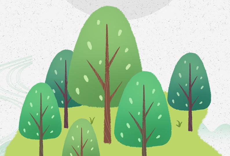"""植樹節丨這些""""高顏值""""的樹木,你都認識嗎?"""