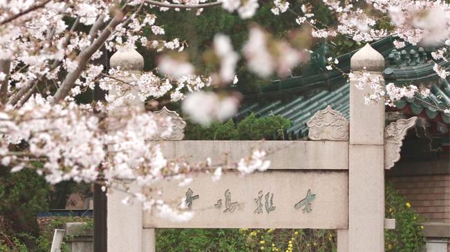 去雞鳴寺拜訪春天