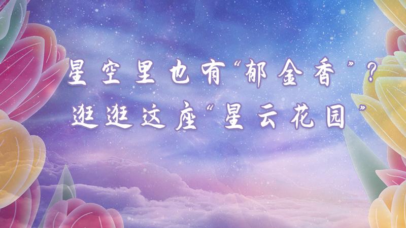 """星空裏也有朵""""鬱金香""""?雲逛""""星雲花園"""""""