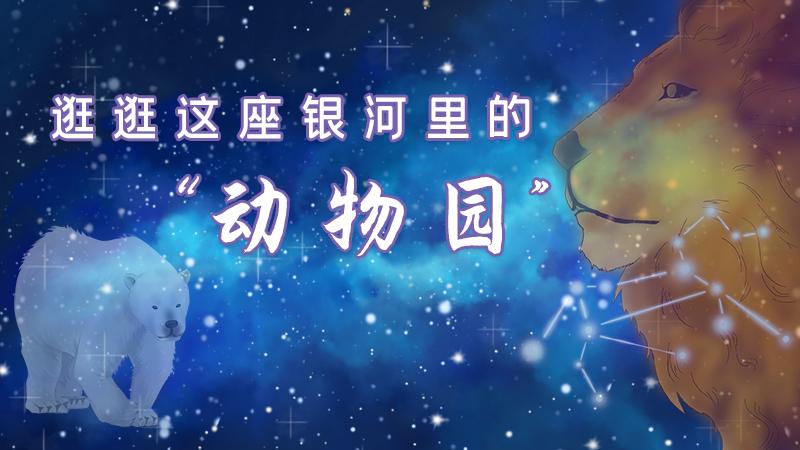 """星空""""動物園""""有多奇妙?天文專家告訴你"""