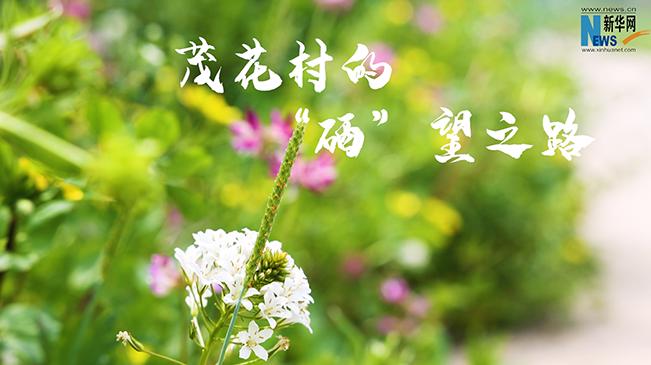 """宜興茂花村的""""硒""""望之路"""