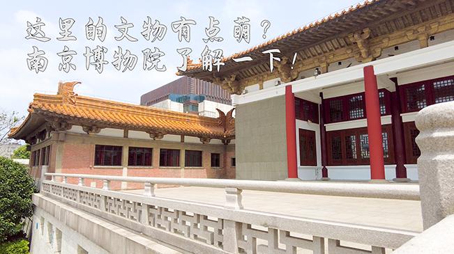 這裏的文物有點萌 南京博物院了解一下