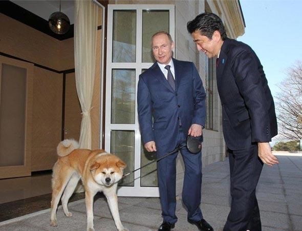 普京牽狗會見安倍 兩人談笑風生